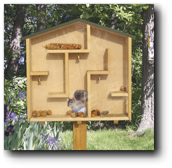 Mazing Squirrel House Woodworking Plans