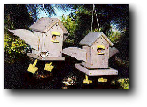 Humorous Bird Houses and Bird Feeders Woodworking Plans