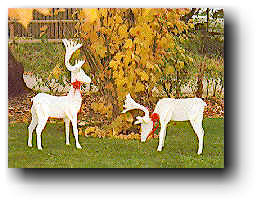 christmas reindeer wood plans our reindeer are very easy to make from ...
